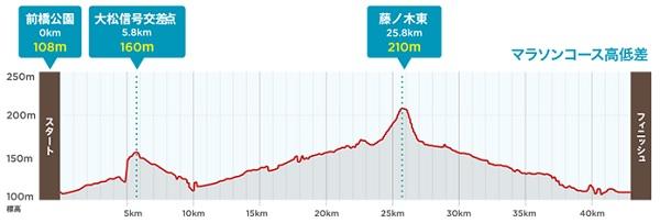 前橋渋川シティマラソン高低差